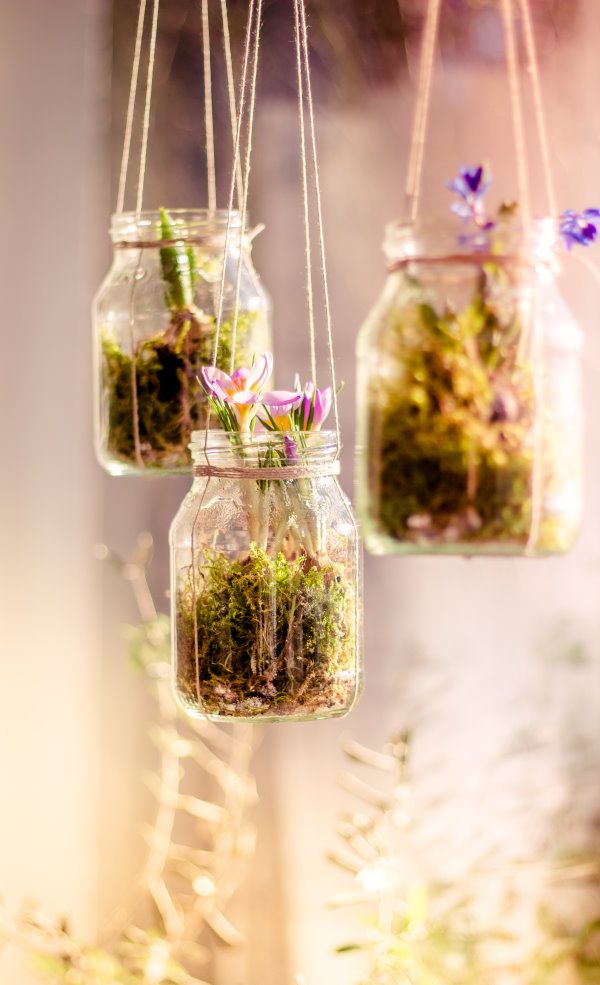 Urban Jungle Bloggers: Hanging Planters via @titatoni