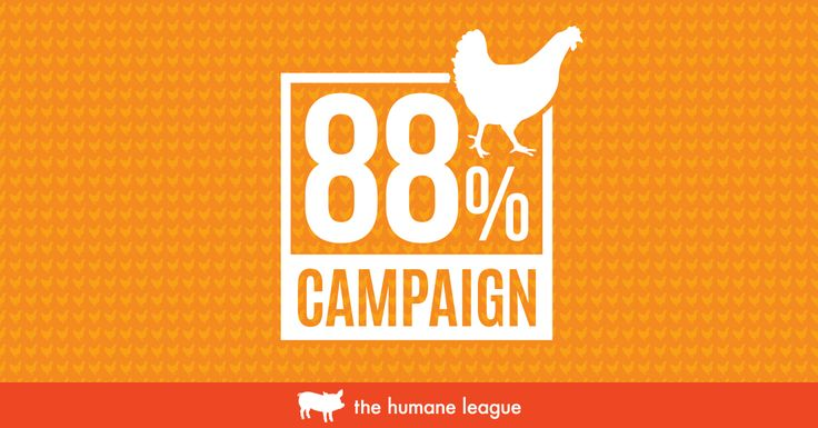 """The """"88% Campaign"""" has Convinced Large Companies like Aramark and Subway to Adopt more Humane Chicken Policies. Join their Fast Action Network to Continue this Great Success"""