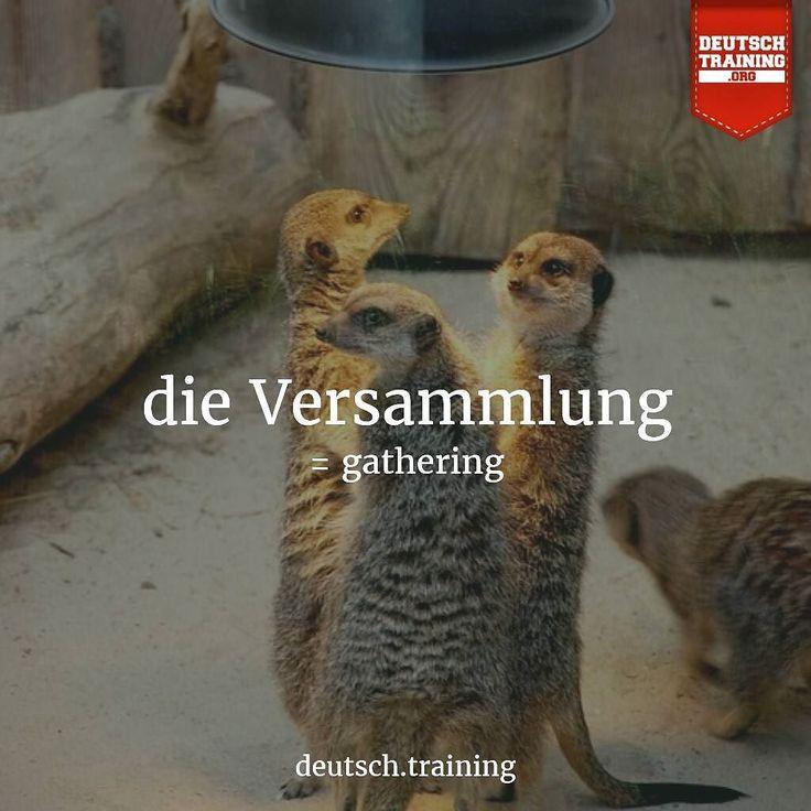 Learn German Online with DEUTSCH.TRAINING