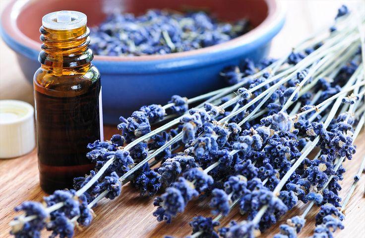 5 najlepších éterických olejov, ktoré ťa zbavia stresu: návod ako ich správne používať