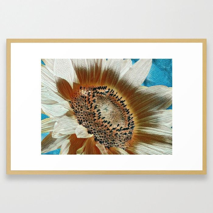 Buy Cream Colored Sunflower Framed Art Print by judypalkimas. Worldwide shipping available at Society6.com. Just one of millions of high quality products available.