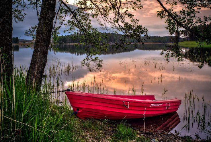 Jezioro, Las, Czerwona, Łódka
