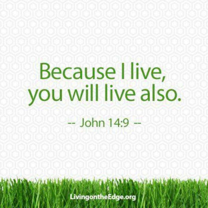 14 Best John Bratby Images On Pinterest: 195 Best Images About Jesus Said... On Pinterest