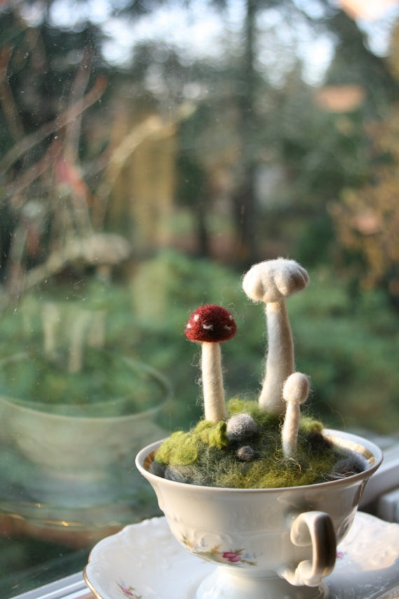 unbelievably adorable mushrooms in a teacup!