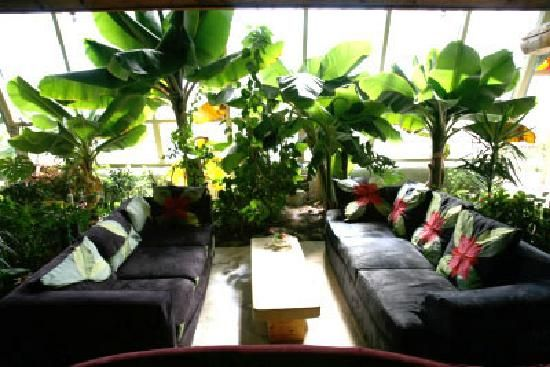 Earthship Biotecture: Phoenix Earthship. Fully Furnished, Super Luxury.