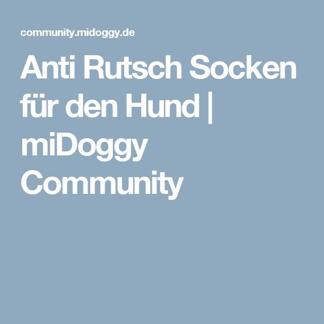 Anti Rutsch Socken für den Hund   miDoggy Community