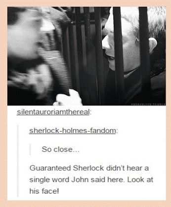 *Heavy breathing* Now was that me or Sherlock?