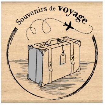 Souvenirs de voyage Une valise Un avion C'est toujours agréable de recevoir des souvenirs.
