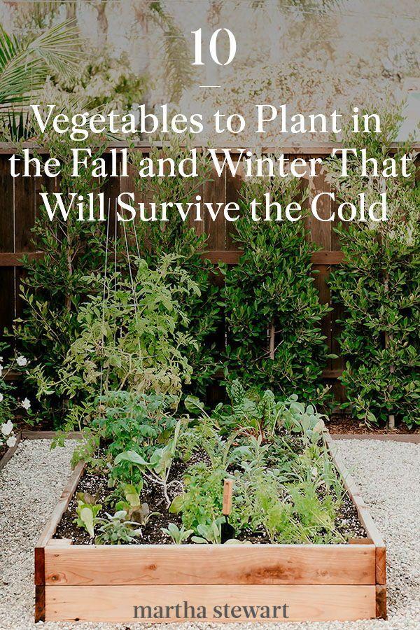eaf9e397d34ee0a52bdda388f8cbeec7 - How Do Gardeners Make Money In Winter