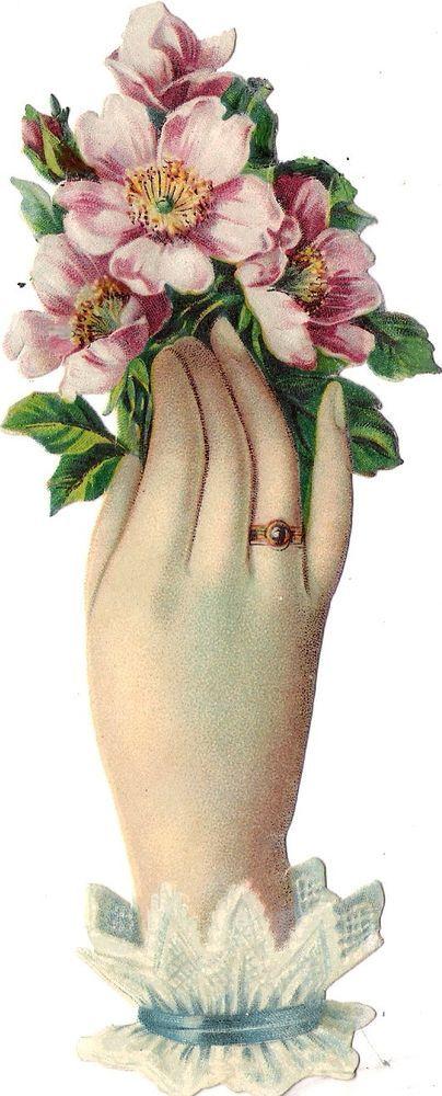Oblaten Glanzbild scrap die cut chromo Hand 17cm Blume flower Blüte blossom