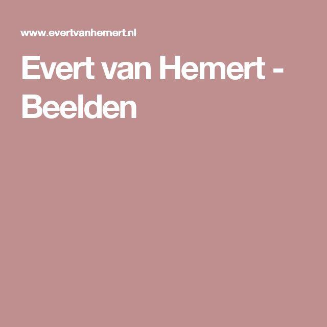 Evert van Hemert - Beelden