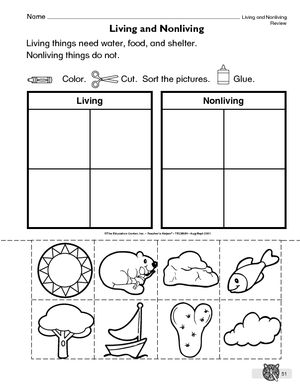 living things and nonliving things grade 2 Google Search