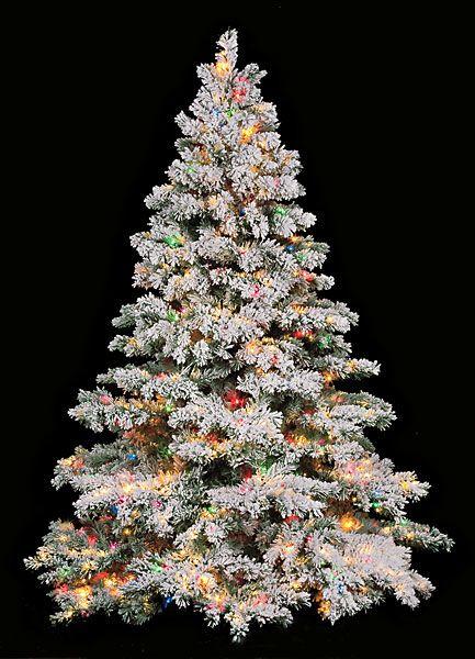 My dream tree: Flocked Christmas Trees