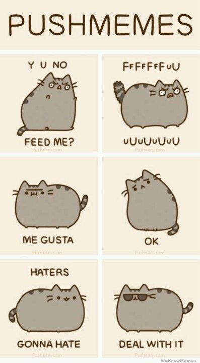 Is it just me or what but I personally luv pusheen she is so cute and fat