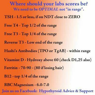 Thyroid tests & ranges                                                                                                                                                                                 More