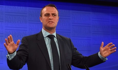 Tim Wilson resigns to seek Liberal preselection for seat of Goldstein Wilson, who has served as human rights commissioner for two years of his five-year term, will seek preselection in seat now held by Andrew Robb