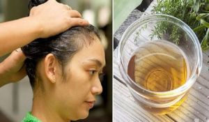 The hair is one of the greatest symbols of femininity and beauty but because of the frequent treatments with different kinds of chemical substances like dyeing, drying, ironing and inadequate care the hair is violated, becomes dry and damaged. All these factors together with the daily stress and body changes are causing the hair falling. ...