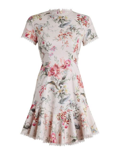 Zimmermann - Mercer Flutter Dress In Cream Floral