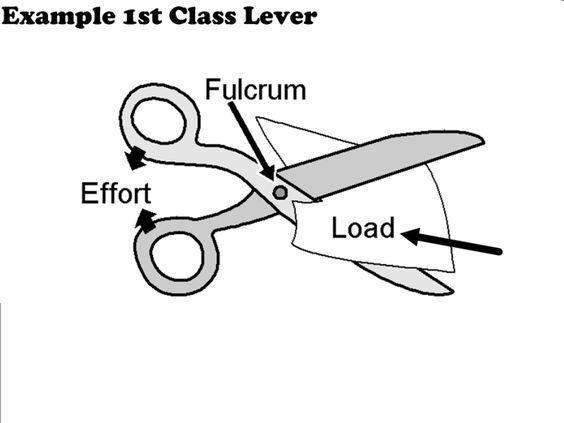 Scissors are a class 1 lever | LEVERS | Pinterest
