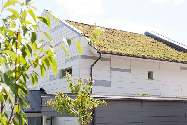 Passivhuset har ett annorlunda tak. Nämligen ett grästak.