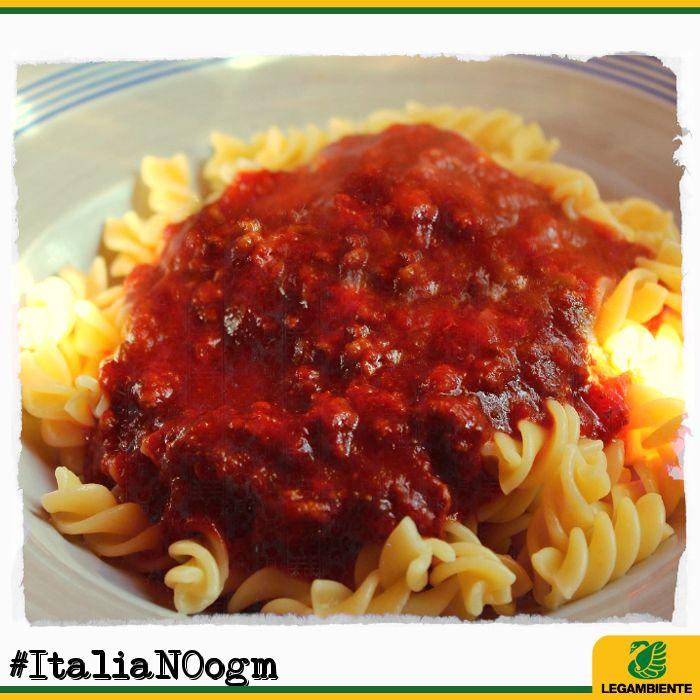 Gli OGM? Se vi piacciono tanto mangiateveli voi. Noi preferiamo cibi italiani doc, di qualità, non contaminati.  E tu? Dillo con una foto: #ItaliaNOogm  [Leggi qui -> http://www.legambiente.it/italia-no-ogm]