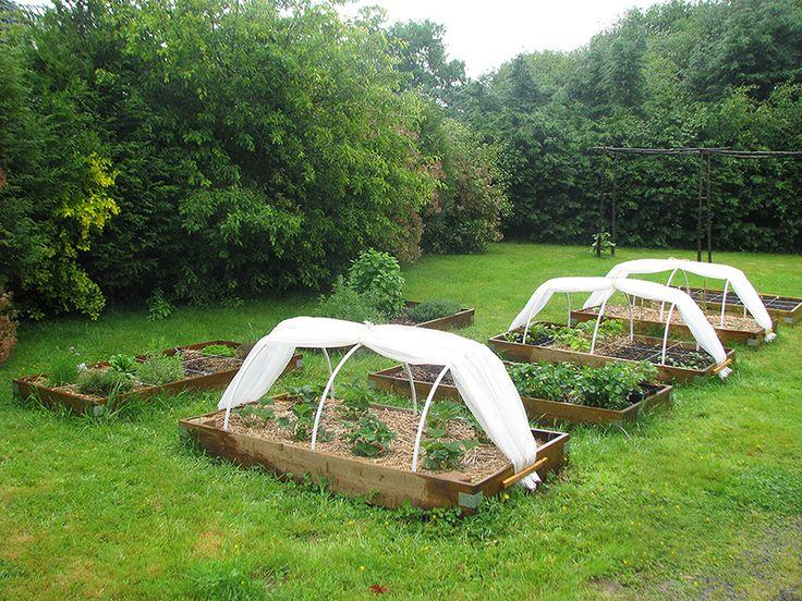 Les 25 meilleures id es concernant carre potager en bois sur pinterest carr potager bois - Petit jardin potager carre ...