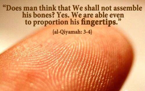 Subhanallah even in the smallest details are beautiful reminders of Allah