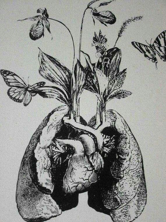 98 besten heart bilder auf pinterest mein herz anatomie. Black Bedroom Furniture Sets. Home Design Ideas