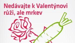 Logio - Proč vozit růže do Čech v únoru? Jen kvůli svátku Svatého Valentýna? Nebylo by lepší přesunout svátek na léto a v zimě chroupat mrkev?