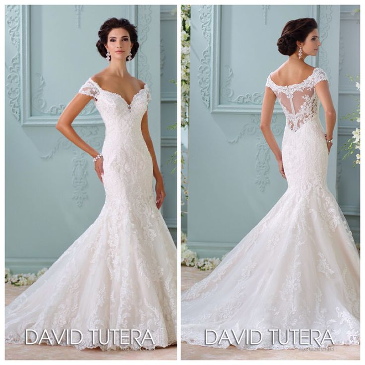 108 best Curvy Couture Bridal; Plus Size Wedding Dresses images on ...