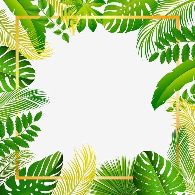 Tropical Summer Beautiful Forest Leaves Frame Vector And Png Flower Background Wallpaper Plant Illustration Jungle Illustration