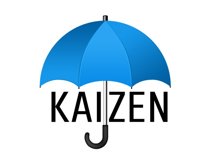 25 Best Ideas About Kaizen On Pinterest