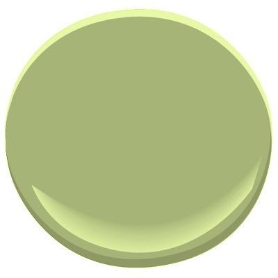 328 best i just wanna orange front door images on Green grey paint benjamin moore