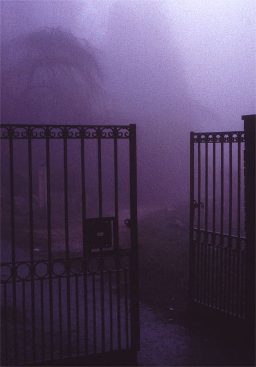 Violet mist #color #inspiration ~ Ʀεƥɪאאεð вƴ ╭•⊰✿ вƴ © Ʀσxʌאʌ Ƭʌאʌ ✿⊱•╮