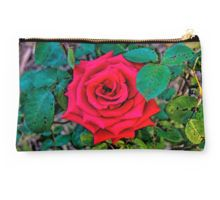 Arose to Perfection - Mount Alexander, Victoria Studio Pouch