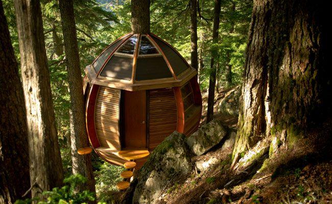 Engenheiro canadense constrói casa de árvore em forma de ovo