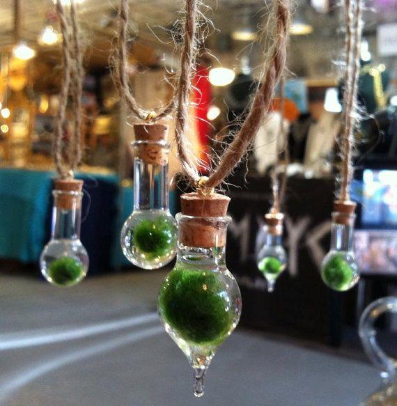 Japanese Marimo Moss Ball Terrarium Necklace Creative