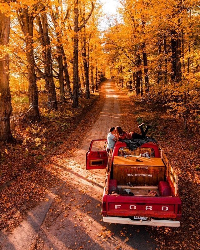Herbst | fallen | verlässt | Inspiration | Farben | Straße | Paar | Bäume |