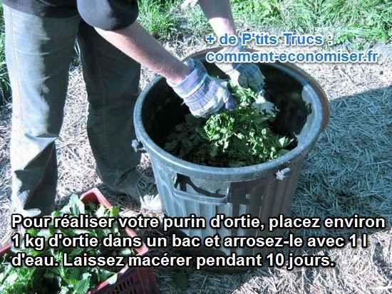 Le purin d'ortie est riche en potassium, il stimule la croissance des plantes et les aide à se forger des défenses naturelles contre les maladies. Il est aussi particulièrement connu pour être un super insecticide pas cher.   Découvrez l'astuce ici : http://www.comment-economiser.fr/purin-d-ortie-engrais-et-insecticide.html?utm_content=buffer5600a&utm_medium=social&utm_source=pinterest.com&utm_campaign=buffer