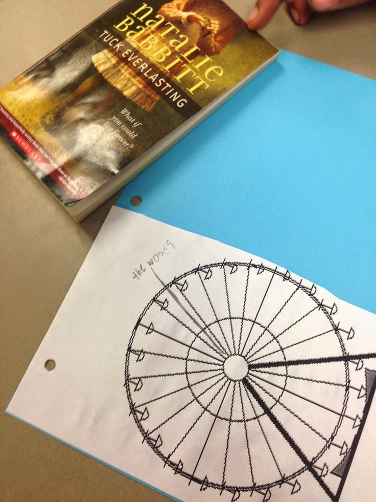 Life in Fifth Grade: Tuck Everlasting Novel Study (Beginning)