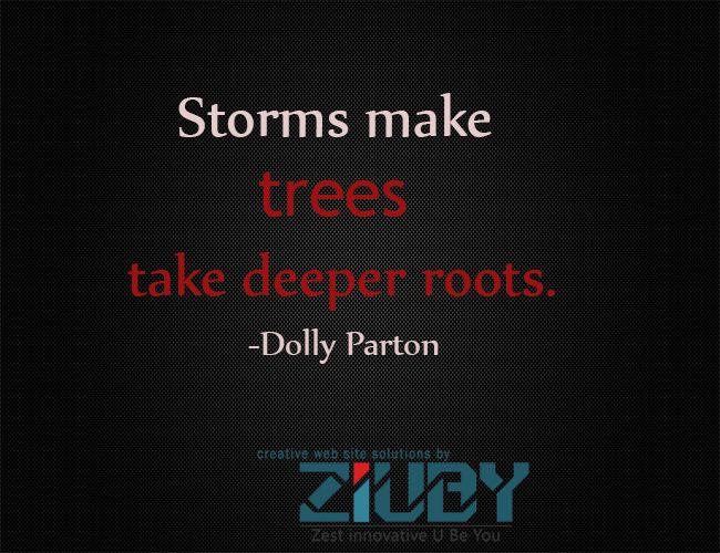 #Stroms #Trees #roots By #ziuby #India #Pune #Hongkong #Bangalore #NewZealand