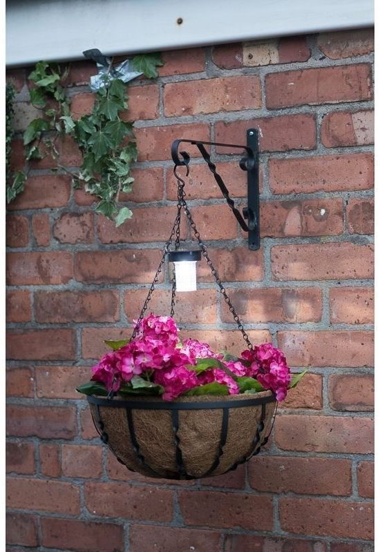 Best 25 balcony planters ideas on pinterest balcony for Balcony hanging planter