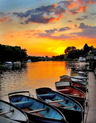 Richmond upon Thames. What to do? Shopping, pub lunch on river, walk to Kew Gardens or Richmond park or cycle to Kew or to Hampton Court! Bikes available for hire in Richmond Station or on river under the bridge