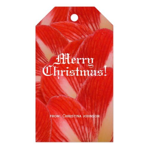 Red White Amaryllis Floral Merry Christmas Gift Tags