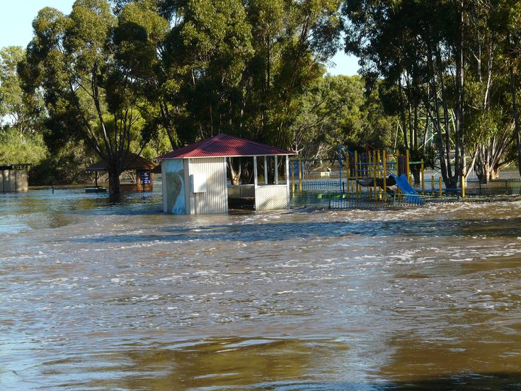 Floodwaters from the Richardson River swirl through Avon Park at Donald during the 2011 floods. M. Larcombe