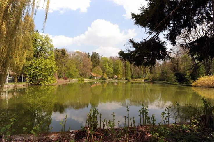 Természet - Zirci Arborétum Természetvédelmi Terület