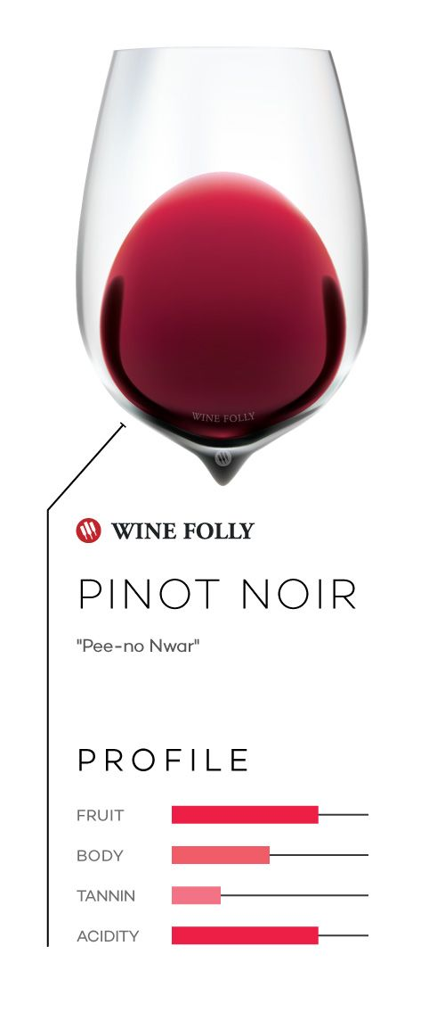 Pinot Noir wine in a glass with taste profile and pronunciation