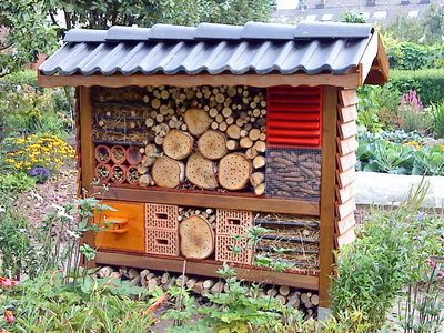 Insect - hotel...