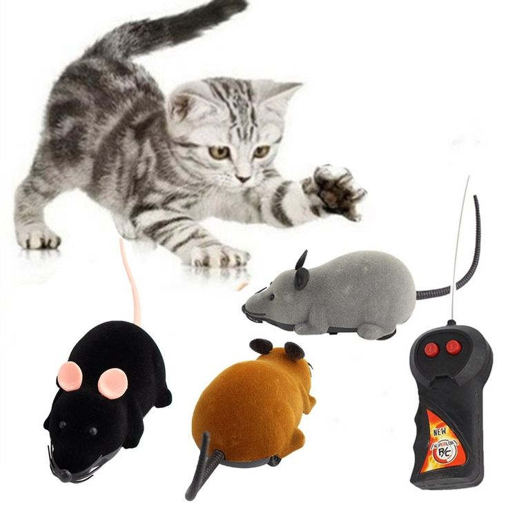 A fun toy for your pet #Happy_Pet_Toy