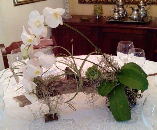 Centro de mesa r stico con phalenopsis suculenta y - Centro de mesa rustico ...